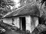 thatched-hut