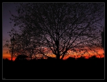 hyde_park_sunset.jpg